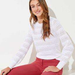 Pointelle Sweater | LOFT