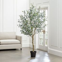 Faux Olive Tree + Reviews | Crate and Barrel | Crate & Barrel