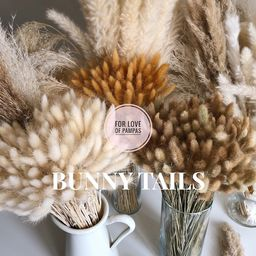 BUNNY TAILS Pampas Grass 30 pcs Natural -Dried Lagurus Home Decor Wedding Easter Decor Bridal Bou...   Etsy (US)