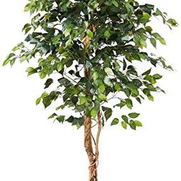 Nearly Natural 6ft. Ficus Artificial Trees, 72in, Green | Amazon (US)