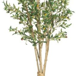 Nearly Natural 5258 Olive Silk Tree, 5-Feet, Green | Amazon (US)