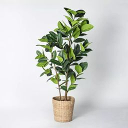 Artificial Rubber Leaf Tree in Pot Green - Threshold™ designed with Studio McGee   Target