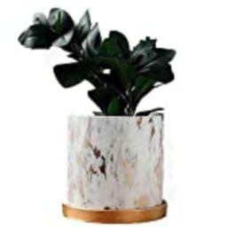 Y&M(TM) Marble Plants Pot Indoor, Plants and Planters Pots Modern Nordic Style Ceramic Marble Look S | Amazon (US)