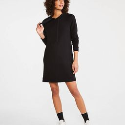 Signaturesoft Plush Hoodie Dress | Lou & Grey (US)