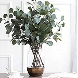"Oriental Goodpick - Life Like Artificial 5 Pcs Silver Dollar Eucalyptus - 25.6"" Tall - for Room, ... | Amazon (US)"