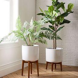 Mid-Century Turned Leg Standing Planters - White | West Elm (US)
