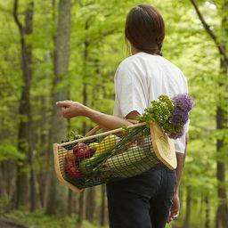 Gardener's Harvest Basket   UncommonGoods
