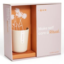 Live Well Ritual Gift Set | Nordstrom