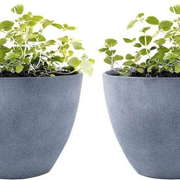 LA JOLIE MUSE Flower Pot Garden Planters Outdoor Indoor, Plant Containers with Drain Hole, Weathe... | Amazon (US)