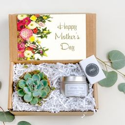 Mothers Day Gift Box Succulent Gift box set | Send a Gift | Customize Gift| Gift Box For Her|Firs... | Etsy (US)
