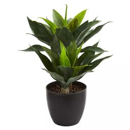 """21"""" x 16"""" Artificial Agave Plant in Decorative Pot Green/Black - Nearly Natural 