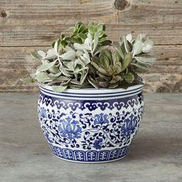 Blue & White Ceramic Planter, Small | Williams-Sonoma