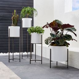 Dundee White Floor Planters   Crate and Barrel   Crate & Barrel