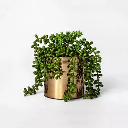 """7"""" x 6.5"""" Artificial String of Pearls Succulent in Pot Green/Gold - Project 62™ 