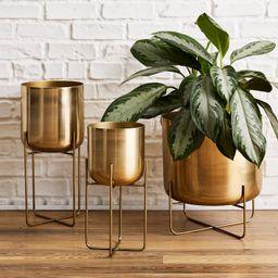 Spun Metal Standing Planter - Brass   West Elm (US)
