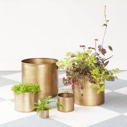 Habit + Form Cylinder Pot   Terrain