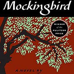 Amazon.com: To Kill a Mockingbird (9780060935467): Harper Lee: Books | Amazon (US)