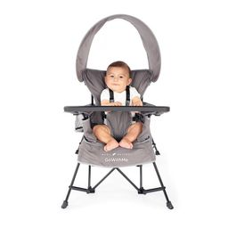 Baby Delight Go With Me Jubilee Deluxe Portable Chair, Gray | Walmart (US)
