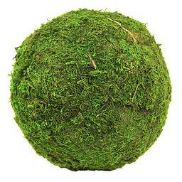 Koyal Wholesale - Green Moss Ball - Set of Six | Zulily