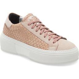 Louise Platform Sneaker | Nordstrom