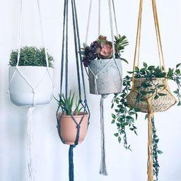 Plant hanger - Macrame - Simple  - Plant Holder- Plant Hanger - Macrame Decor - Wall Art - Wall D... | Etsy (US)