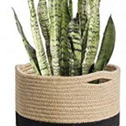 "TIMEYARD Sturdy Jute Rope Plant Basket Modern Woven Basket for 10"" Flower Pot Floor Indoor Plante...   Amazon (US)"