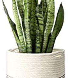 Mkono Cotton Rope Plant Basket Modern Indoor Planter Up to 11 Inch Flower Pot Woven Storage Organ...   Amazon (US)