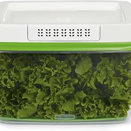 Rubbermaid 1920479 17.3Cup Produce Container, 17.3 Cup, Green | Amazon (US)
