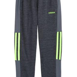 Melane Mesh Stripe Knit Track Pants | Nordstrom