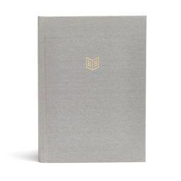 CSB She Reads Truth Bible, Gray Linen | Walmart (US)