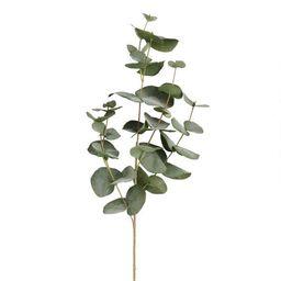 Faux Eucalyptus Spray | World Market