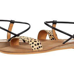 DV Dolce Vita Ledger (Cheetah) Women's Shoes | Zappos