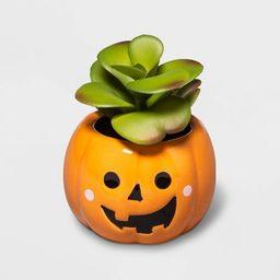 Halloween Orange Jack-O'-Lantern Succulent - Hyde & EEK! Boutique™ | Target