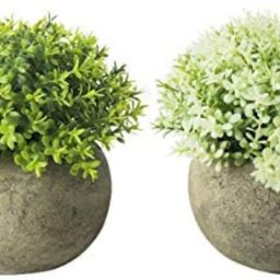 THE BLOOM TIMES 2 Pcs Fake Plant for Bathroom/Home Office Decor, Small Artificial Faux Greenery f... | Amazon (US)