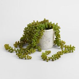 Faux String of Pearls Plant in Textured Pot | World Market