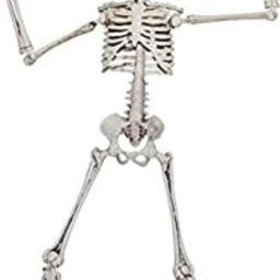 Poseable Halloween Skeleton Figurine Decoration, 19 Inch | Amazon (US)