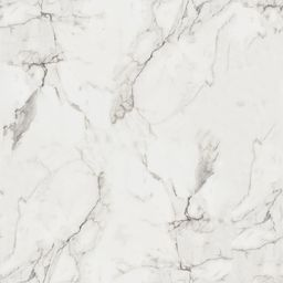 5 ft. x 12 ft. Laminate Sheet in 180fx Calacatta Marble with SatinTouch Finish   The Home Depot