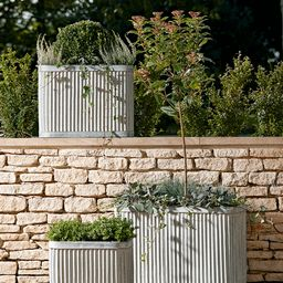 Three Fluted Zinc Planters   Cox and Cox