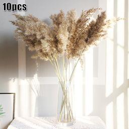 Natural Dried Pampas Grass Reed Flower Bunch Wedding Bouquet Home Decors 10 Pcs   Walmart (US)