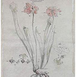 Creative Co-op Floral Flax Wall Décor, Grey | Amazon (US)
