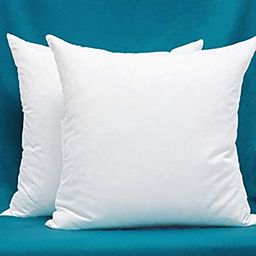 Set of 2, Cotton Fabric Pillow Inserts, Filled with Down and Feather Decorative Throw Pillows Ins... | Amazon (US)