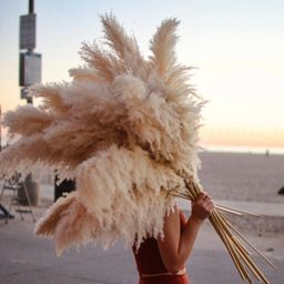PAMPAS GRASS (3 CT)  -  Natural Dried Pampas Grass Decor, Reed Plume, Dry Boho Wedding Flower Arr... | Etsy (US)
