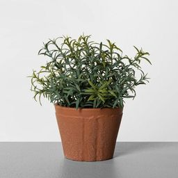 """6.5"""" Faux Rosemary Potted Plant - Hearth & Hand™ with Magnolia 