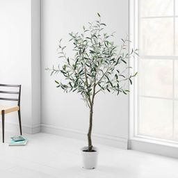 Faux Potted Green Olive Tree - 6'   West Elm (US)
