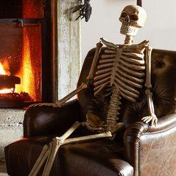 Life-Size Indoor/Outdoor Mr. Bones Skeleton   Pottery Barn (US)