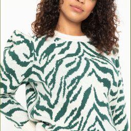 Zebra Intarsia Sweater   Eloquii