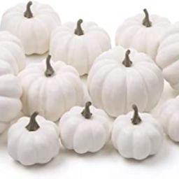 Ogrmar 12 Pack Artificial Assorted Pumpkins, Mini Fake Pumpkins Artificial Vegetables for Hallowe... | Amazon (US)