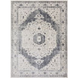 Leiter Area Rug | Boutique Rugs