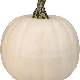 "Northlight 8.5"" Cream White Pumpkin Fall Harvest Table Top Decoration | Amazon (US)"