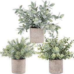 3 Pack Mini Potted Fake Plants Artificial  Plastic  Eucalyptus Plants for Home Office Desk Room D... | Amazon (US)